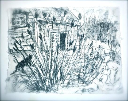 Drawing ©Flora Doehler
