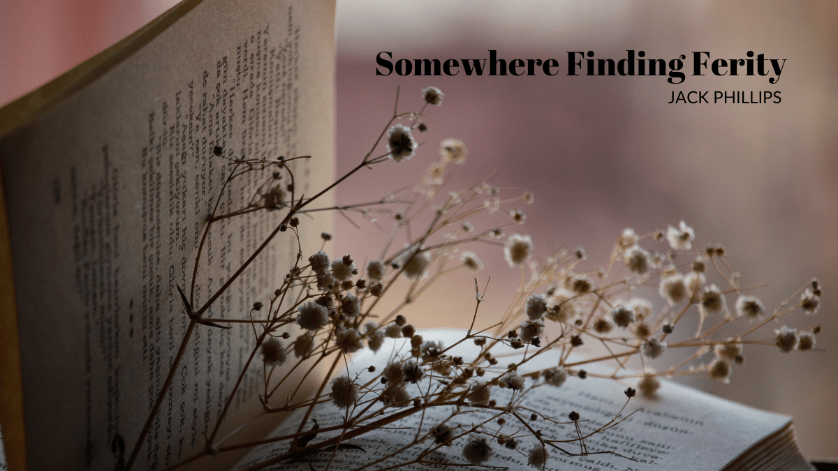 Somewhere Finding Ferity by Jack Phillips