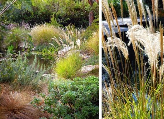 romantic-garden-design-eckersley-5