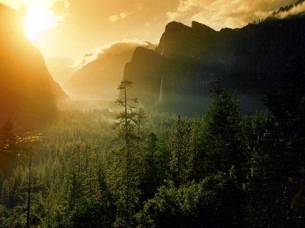 Yosemite National Park 2