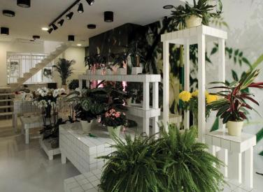 The designed interior of Aktipis