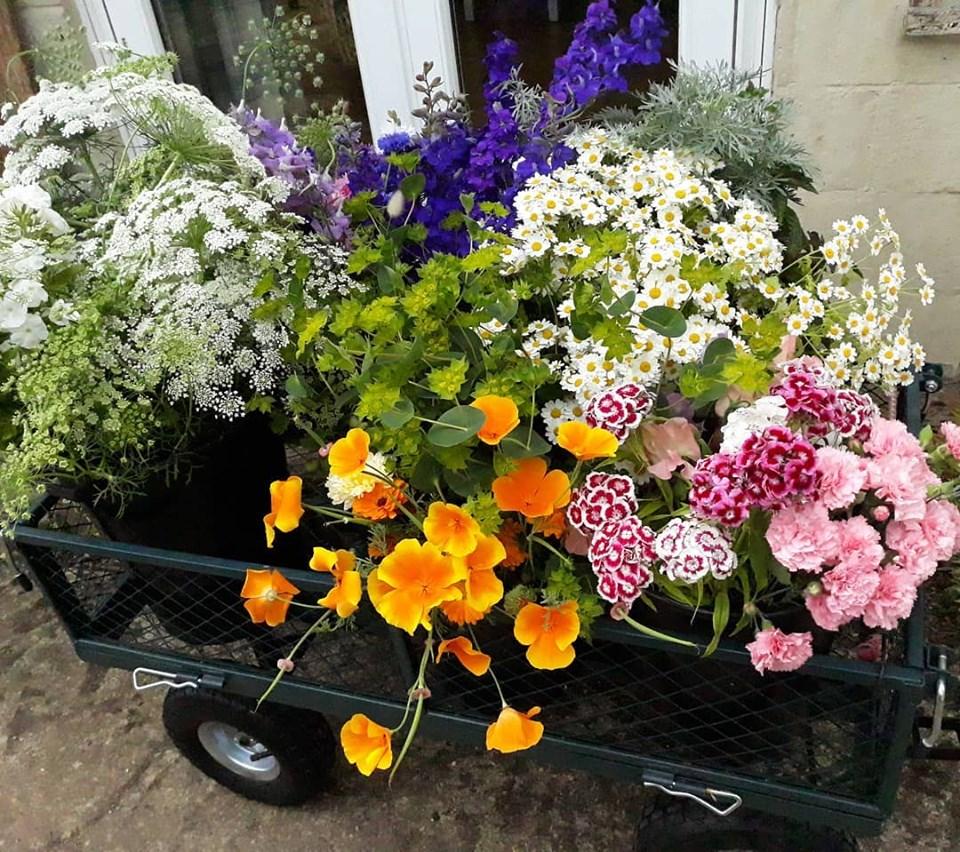 Trolleuy full of buckets of flowers