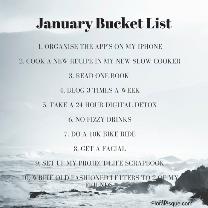 January Bucket List Floralesque Blog
