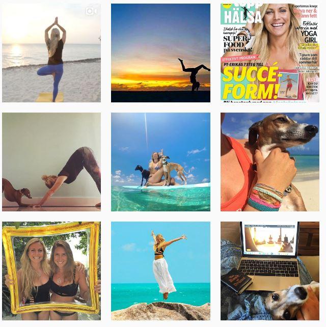 My top 5 Instagram Accounts Floralesque 5