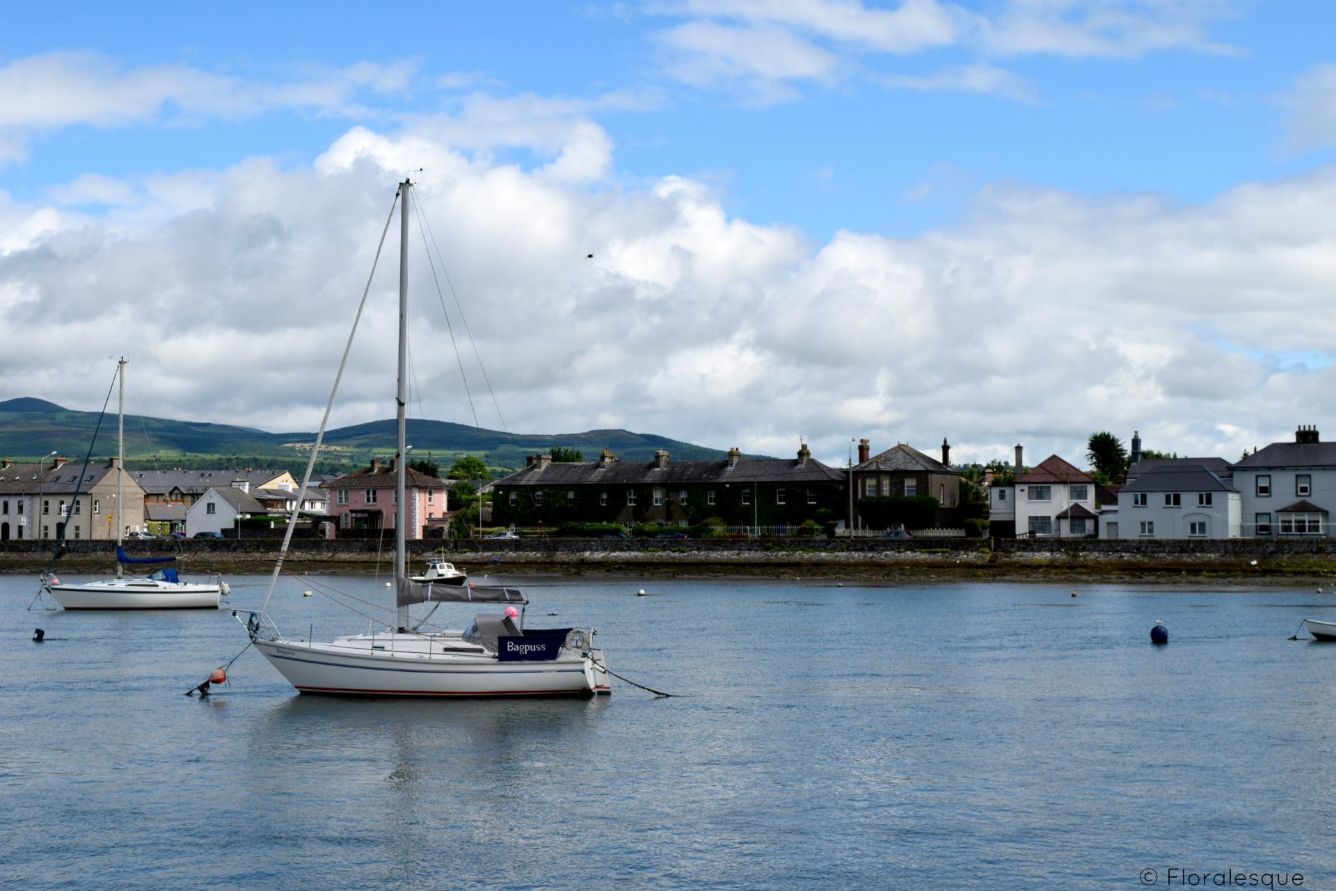 A morning spent in Dungarven Floralesque