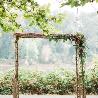 birch arbor