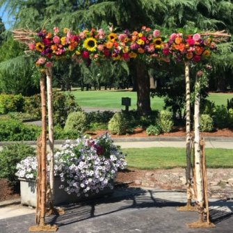 Colorful Seasonal Flowers on Birch Arbor