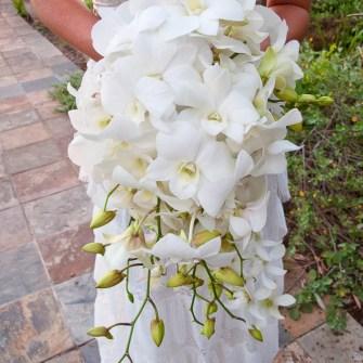 amazing white phalaenopsis orchid cascading bridal bouquet