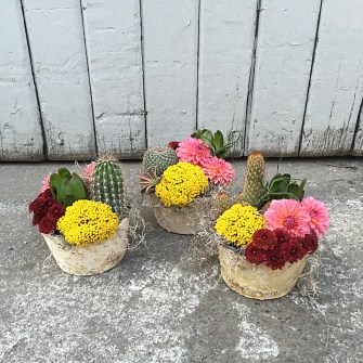 Pendleton themed event flowers