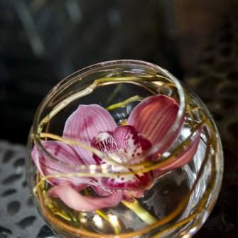 Cymbidium orchid bubble bowl