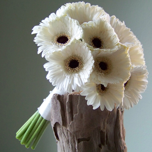 Floral Verde LLC  Cincinnati Ohio wedding flowers