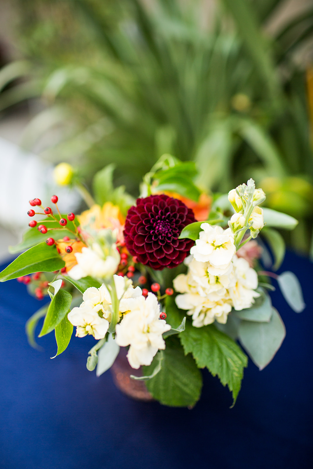Low flower arrangement with dahlias and stock resting on blue velvet linen