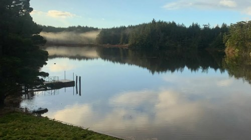 Foggy morning on Floras Lake in the winter