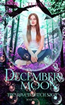 book cover for The Raven Saga 2 - December Moon - Suzy Turner - new cover