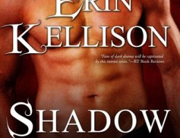 book cover for Shadow Touched by Erin Kellison