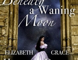 book cover for Box Set - Beneath a Waning Moon - A Very Proper Monster by Elizabeth Hunter and Gaslight Hades by Grace Draven