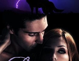 book cover for Love Immortal - A Vampire Romance Novel by Felicity Heaton