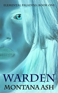Mini Review: Warden (Elemental Paladins #1) by Montana Ash
