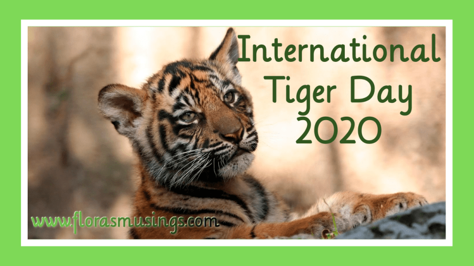 Featured Image - International Tiger Day 2020 (1)