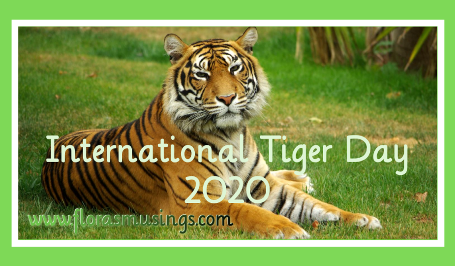 Featured Image - International Tiger Day 2020 (3)