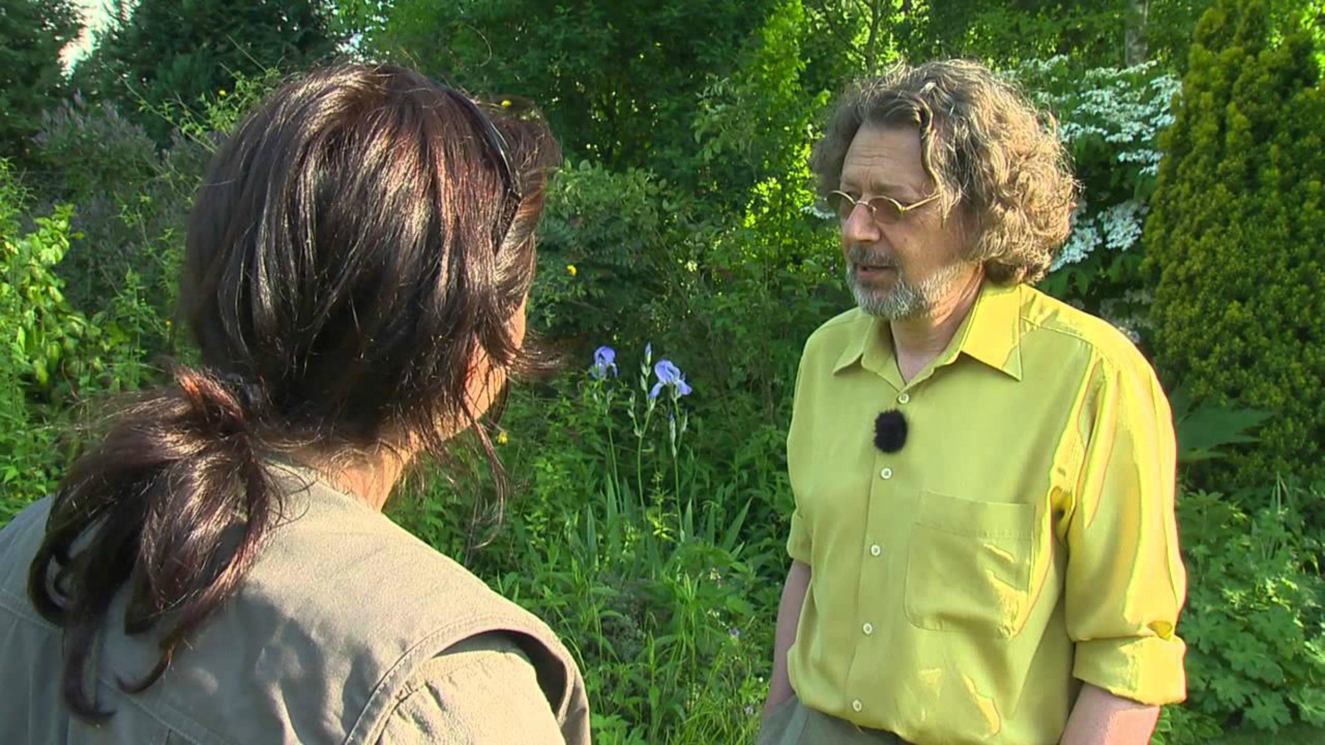 Un jardin en Picardie : le jardin de Dan