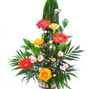 bouquet fleurs Merci casablanca