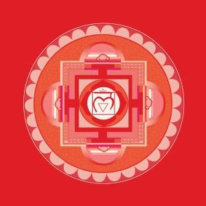 Newsletter Dezember - Beckenschiefstand mit Akupunkt(ur)-Massage beheben - wurzel chakra