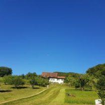 Natur - Auftanken im Grünen - Florence Zumbihl
