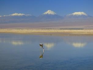 Chilean view