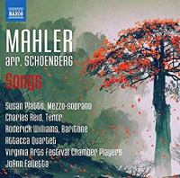 Mahler Platts Falletta NAXOS