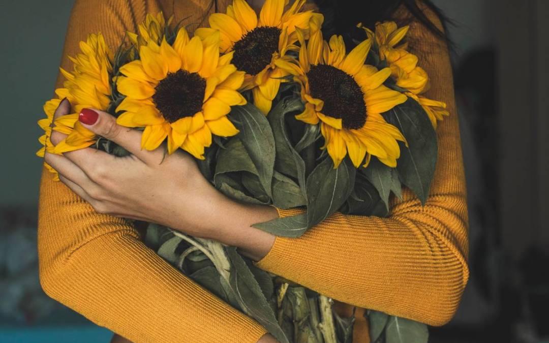 Cuidados Y Mantenimiento De Las Flores