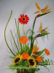 Arreglo floral exótico de girasol, gerberas y ave del paraíso - E18
