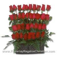 Arreglo primaveral tipo jardinera con rosas - P14