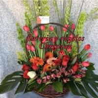 NU4 - Hermosa canasta de flores con tulipanes y gerberas. Envío a domicilio en Tijuana.