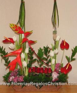Primaveral de heliconeas, rosas y tulipanes - P16