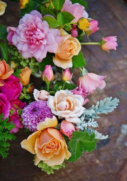 Fondos de whatsapp de flores bonitas