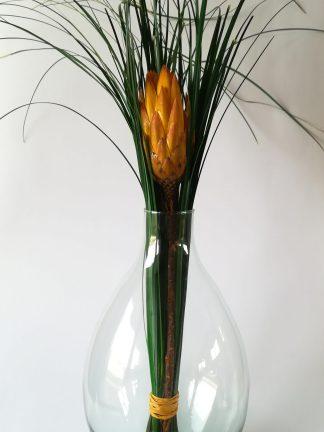 jarron con protea