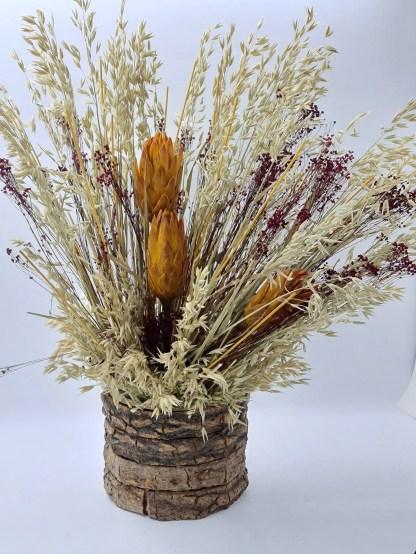 centro flores protea