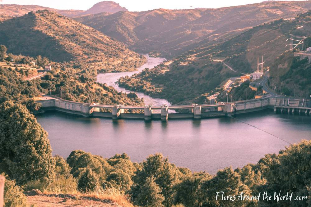 Douro Valley: Bemposta Dam viewpoint