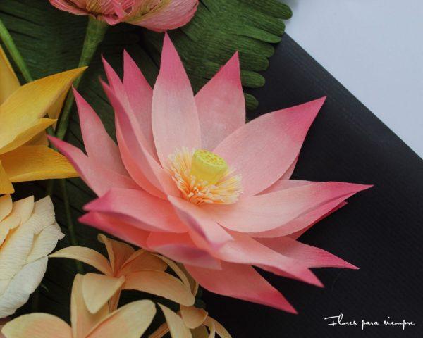 flo de loto rosa