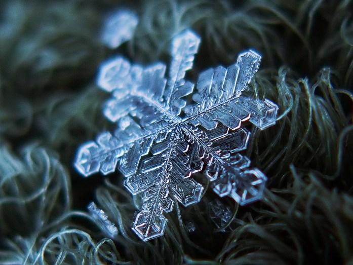 Alexey-Kljatov-snowflakes-2