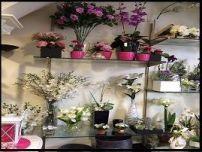 10.-tienda de flores zaira