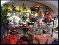 8.-tienda de flores zaira