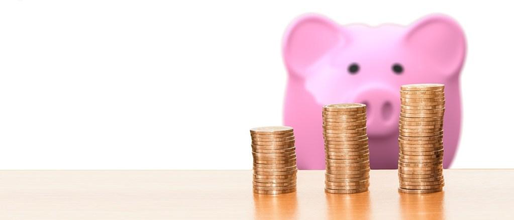 frais professionnel dividende capital