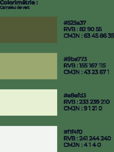 Charte graphique et typographique pour la réalisation de packaging marque biscottes roger
