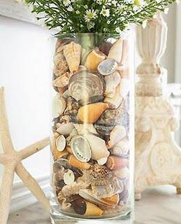 conchas potes