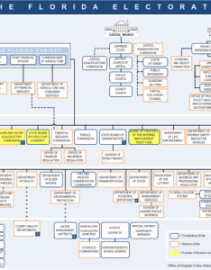 Florida government organizational chart also politicsflorida rh politics