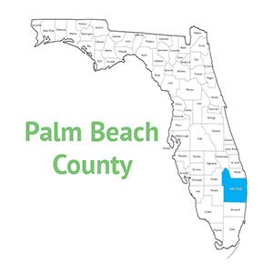 Palm Beach County Arrest and Case Search |