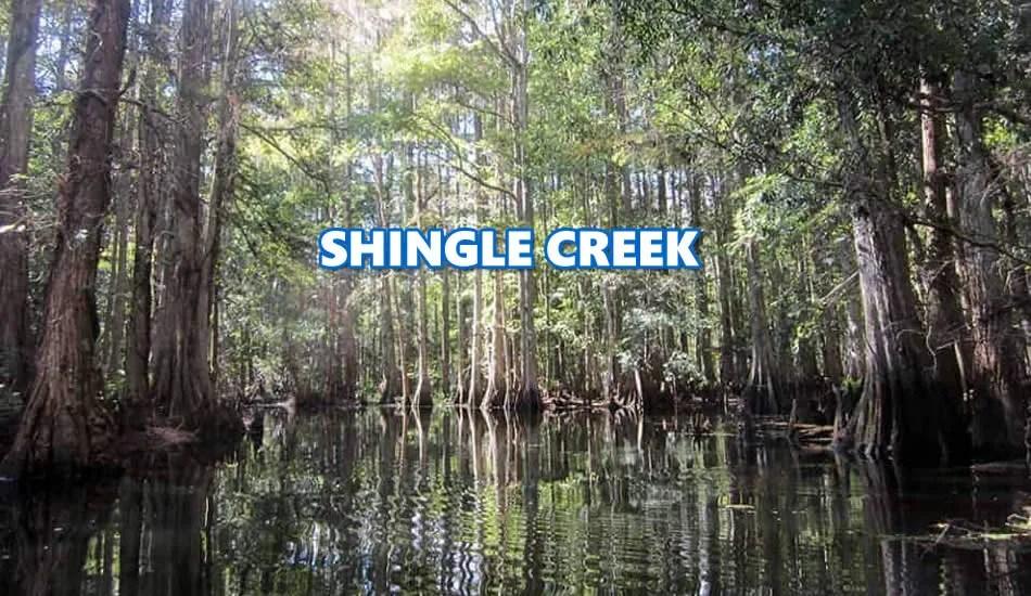 Shingle Creek Fl