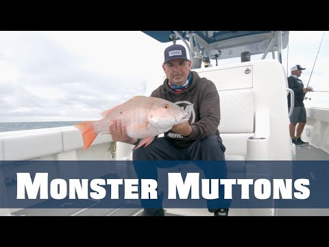 New Episode: Winter Wreck Fishing -  Join www.FSFTV.com now and be the first to see new content.